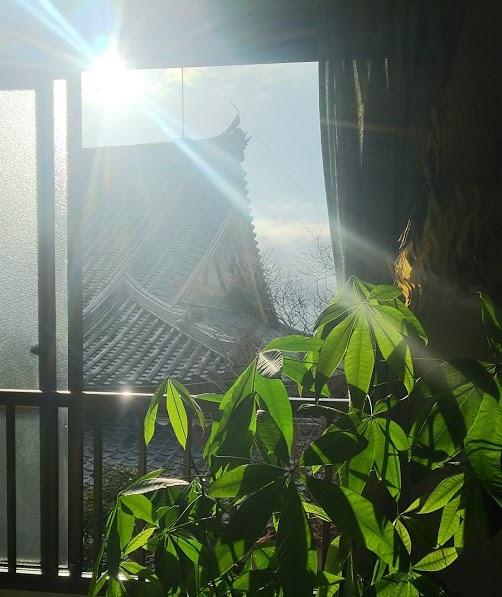 Umidass的朝日